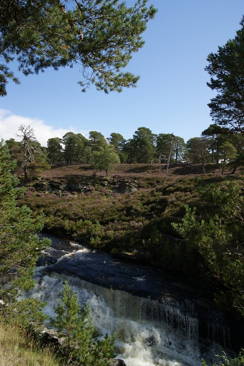 Walking above the Linn of Dee