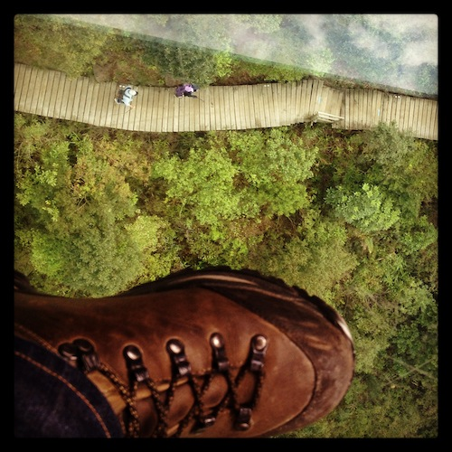 Ramblers below our glass-bottomed cable car