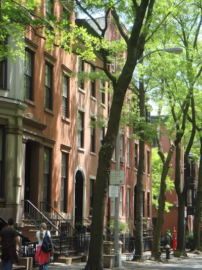 The shaded streets of Brooklyn