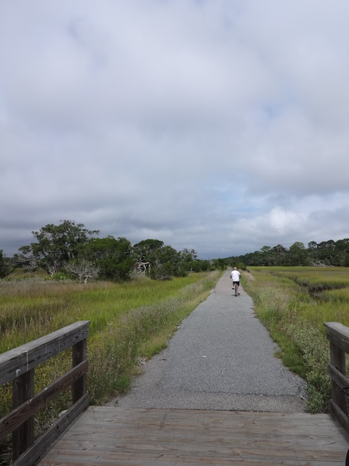 Cycling across the marshes