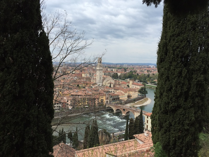 The city from the Castel San Pietro