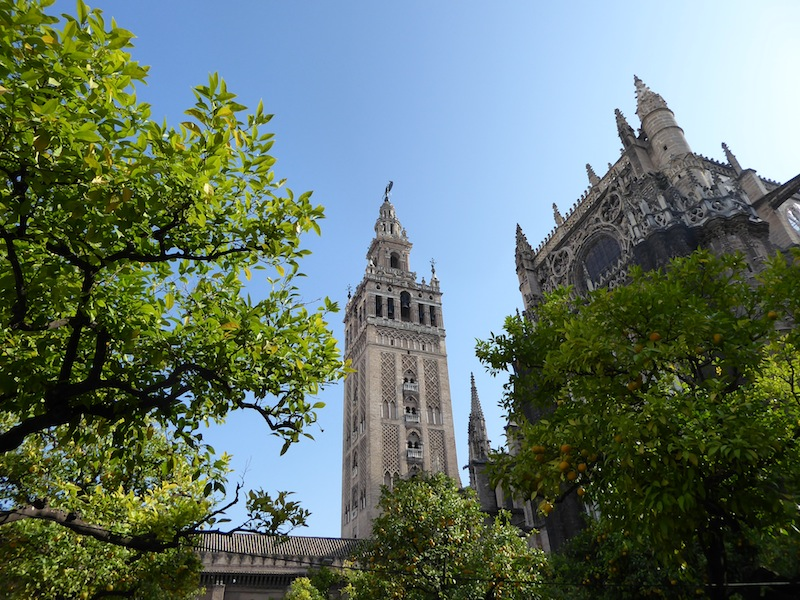 La Giralda and the cathedral