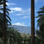 Teide cloaked in snow, from our hotel
