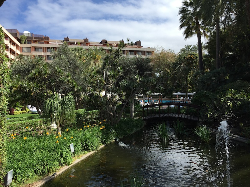 The Hotel Botanico