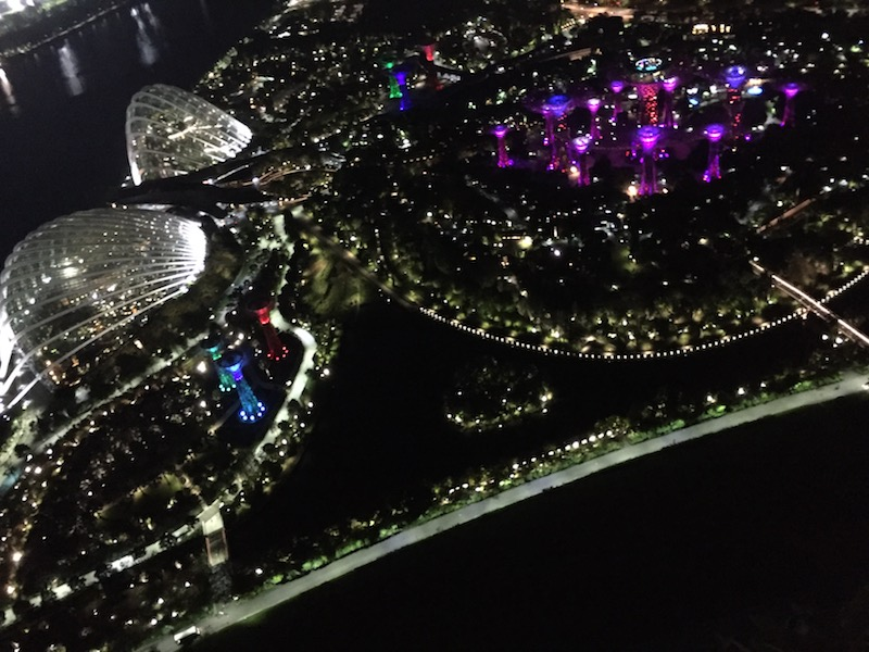 Gardens by the Bay lit up at night