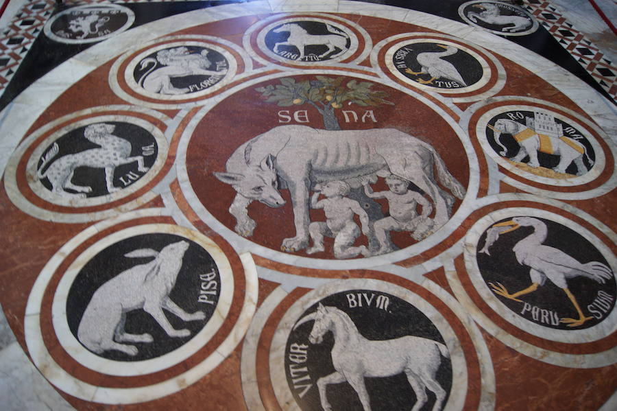 The cathedral floor